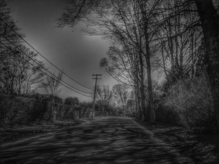 Dark Days.jpg